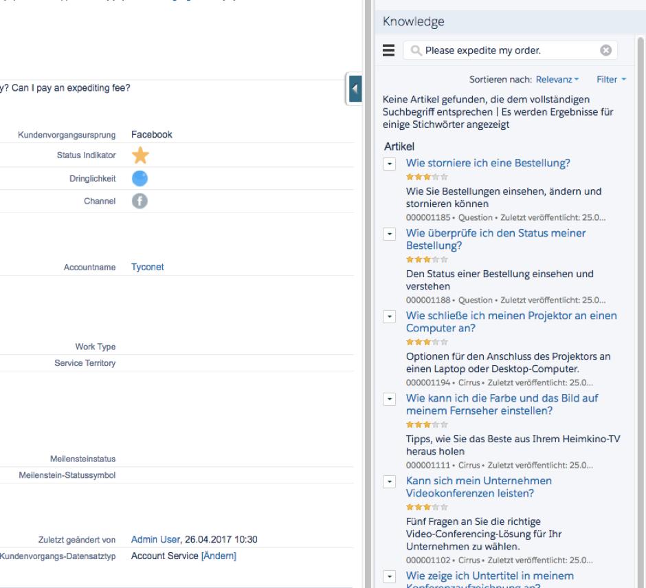03_Screenshot_Salesforce_Knowledge.png