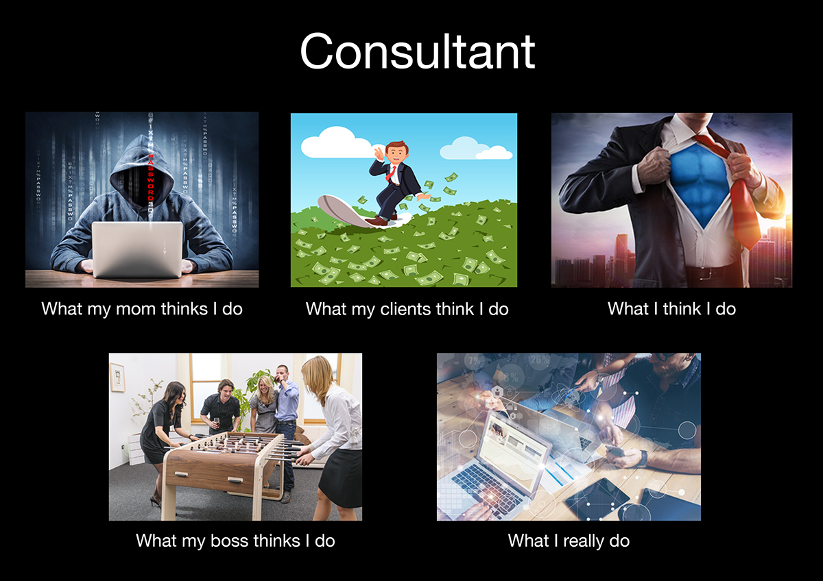 what_my_mom_thinks_I_do_consultant_klein.png