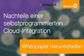 Ebook_Nachteile-einer-selbstprogrammierten-Cloudintegration_Downloadbild-1